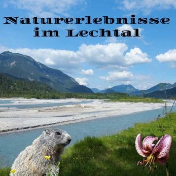 Lechtal dvd cover[8827] SabineMändler