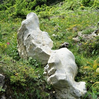 DSC06614 Felsen-Skulptur